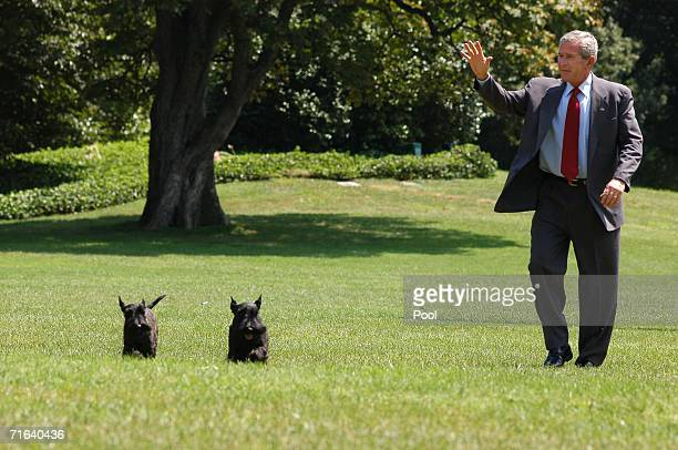 S President George W Bush waves as he arrives on the South Lawn of the White House with his dogs Barney and Miss Beazley August 13 2006 in Washington...