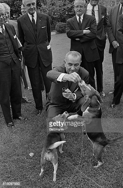 President Johnson feeds the first family's pets him and her as he entertains balanceofpayments task force on the White House lawn April 27 During his...