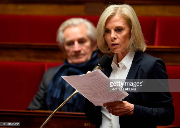 President of the Foreign Affairs at the French assembly Elisabeth Guigou speaks during a questions to the government session at the National Assembly...