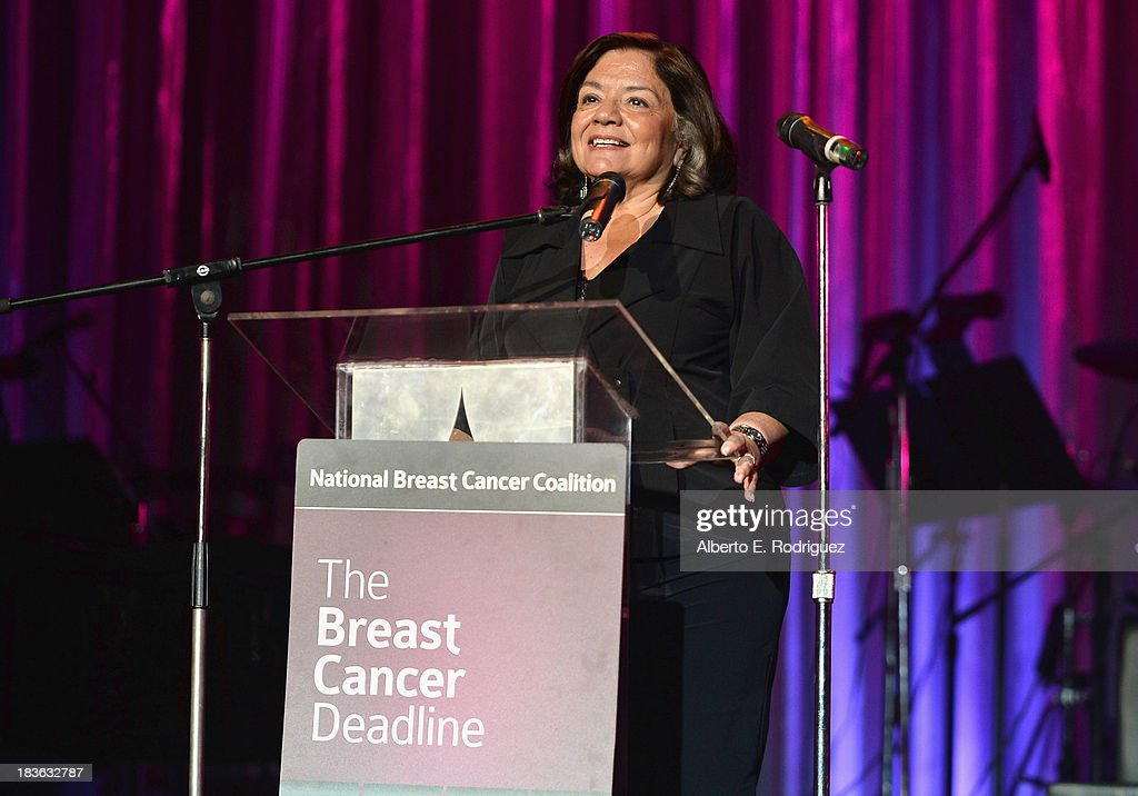President of The National Breast Cancer Coalition Fran Visco attends The National Breast Cancer Coalition Fund presents The 13th Annual Les Girls at the Avalon on October 7, 2013 in Hollywood, California.