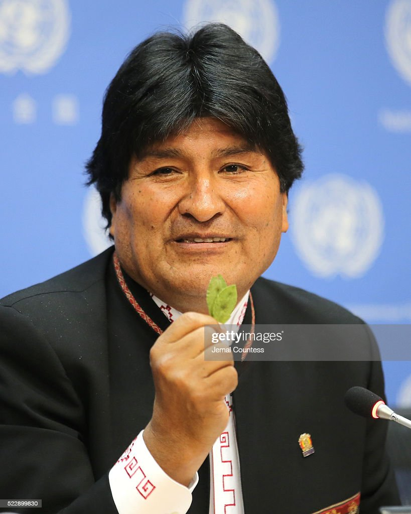 President of the PluriNational State of Bolivia Evo Morales Ayma holds up a coca leaf during his comments about the right of Bolivian farmers to grow their indigenious crops without restrivtive measures from the United States during a press conference at United Nations on April 21, 2016 in New York City.