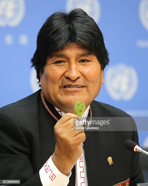 President of the PluriNational State of Bolivia Evo Morales Ayma holds up a coca leaf during his comments about the right of Bolivian farmers to grow...