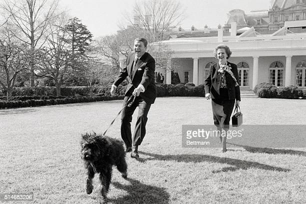 President Ronald Reagan and British Prime Minister Margaret Thatcher walk Reagan's dog Lucky on the White House lawn