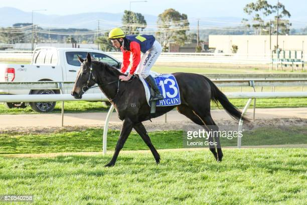 Press Release ridden by Arron Lynch returns after winning the Old Sale Road Vet 0 58 Handicap at Moe Racecourse on August 05 2017 in Moe Australia