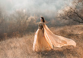 Pretty brunette girl walks in the forest . She is dressed in luxurious, golden dress. The wind playing with her hair and fabrics. The beautiful weather of autumn fog and sun.