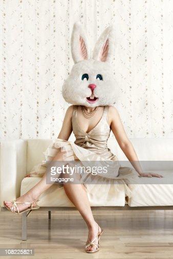 可愛らしい bunny