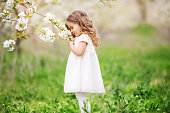 Pretty blonde child girl is smelling flowers in blossom cherry garden. Spring time.