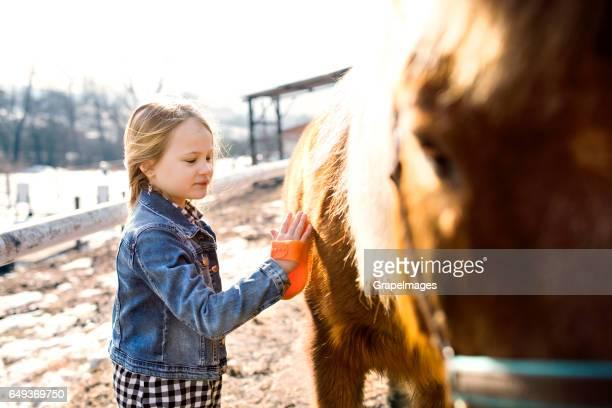 Hübsches kleines Mädchen Fellpflege Pferd an sonnigen Wintertag.