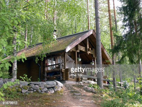 A pretty log cabin in the woods