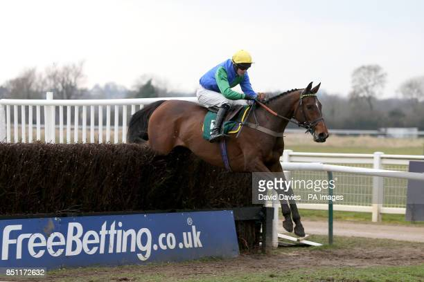 Pretty Penny ridden by Brendan Powell during the Brandon Hire Group Handicap Chase