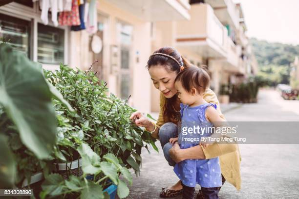 Pretty young mom checking out their home grown vegetables with her lovely baby joyfully.