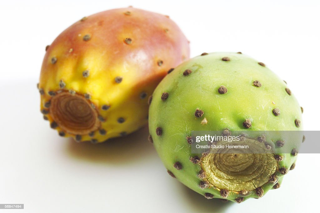 Prickly pear cactus, close-up