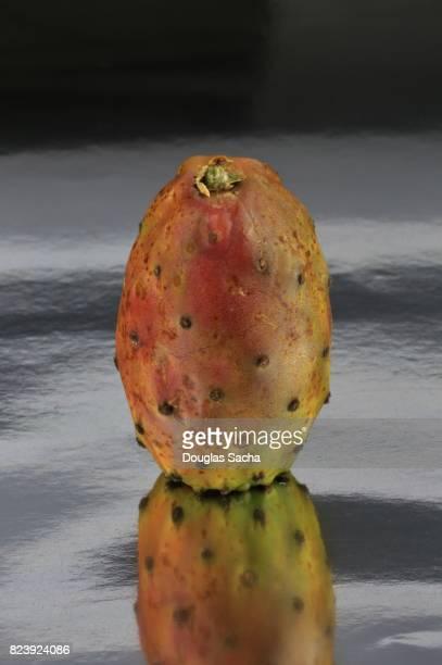 Prickly Pear cactus Fruit (Opuntia littoralis)