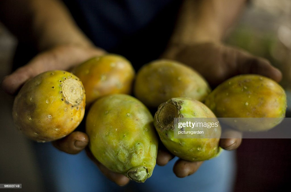 Prickly Pears - Higo