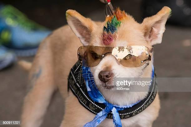 Défilé de la Pride