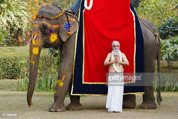 Priest standing in a prayer position beside an elephant