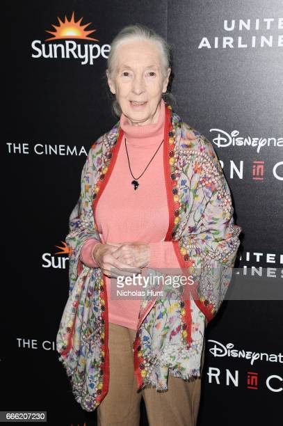 Primatologist Jane Goodall attends the Disneynature With The Cinema Society Host The Premiere Of 'Born In China' at Landmark Sunshine Cinema on April...