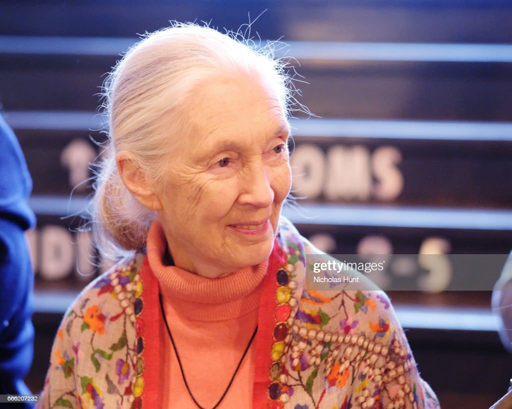 Primatologist Jane Goodall attends the Disneynature With The Cinema Society Host The Premiere Of 'Born In China' at Landmark Sunshine Cinema on April 8, 2017 in New York City.