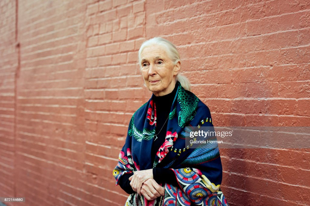 Jane Goodall, New York Times, October 21, 2017
