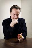 David Cameron, Observer UK,