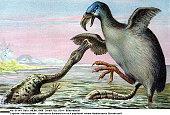 a Brontornis Burmeisteri fighting with a Hadrosaur