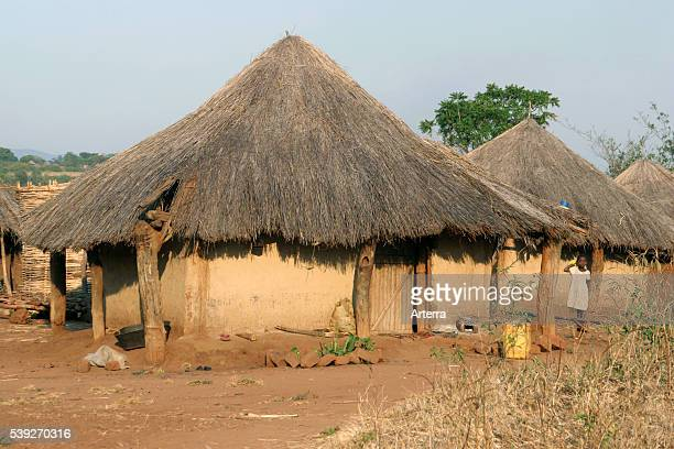 Primitive huts with thatched roofs in village in Zambia Southern Africa