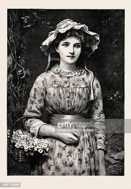 Primrose Day Girl 1888 Engraving