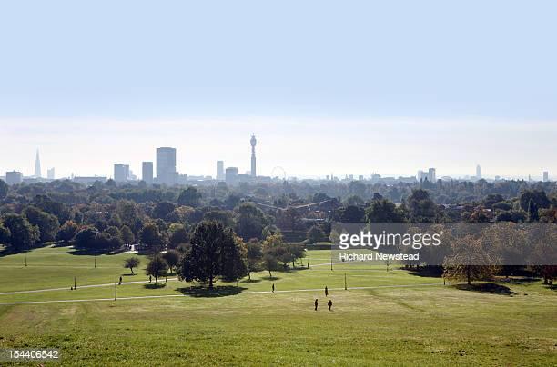 Primrose hill and London skyline