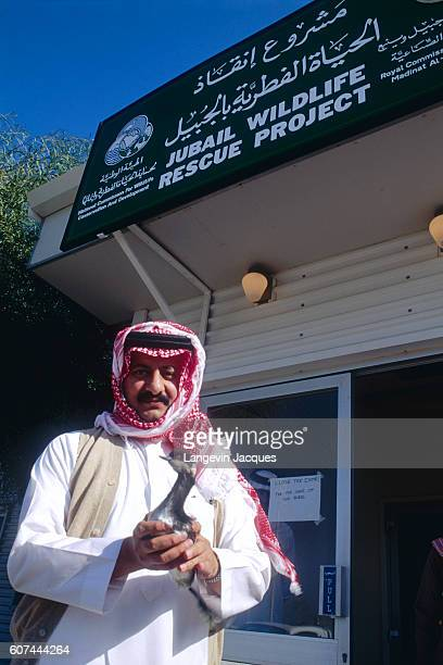 Prince Abdullah bin Faisal bin Turki alSaud holds a shorebird at the Jubail Wildlife Rescue Project the organization that is responsible for cleaning...