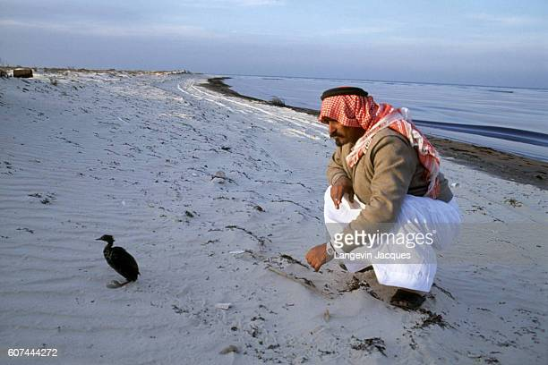 Prince Abdullah bin Faisal bin Turki alSaud watches an oilcovered bird during his visit the Jubail coastline after the Persian Gulf oil spill During...