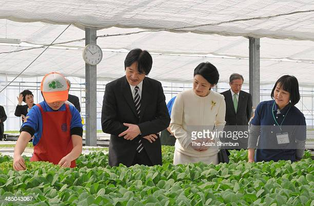 Prince Akishino and Princess Kiko of Akishino are seen during their visit to Shizuoka on April 15 2014 in Hamamtsu Shizuoka Japan