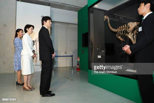 Prince Akishino Princess Kiko and Princess Mako visit the 'TREASURES of the Natural World Best of London's Natural History Museum' exhibition at the...