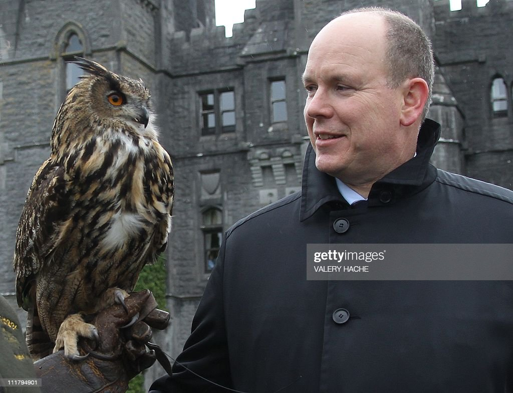Prince Albert II (R) of Monaco stands with an owl at Ashford castle, Ireland on April 6, 2011. Prince Albert II and fiancee Charlene Wittstock of South Africa were on a state visit from April 4 to 6. It was recently announced that South African swimming champion Wittstock had converted to Roman Catholicism ahead of their July marriage.