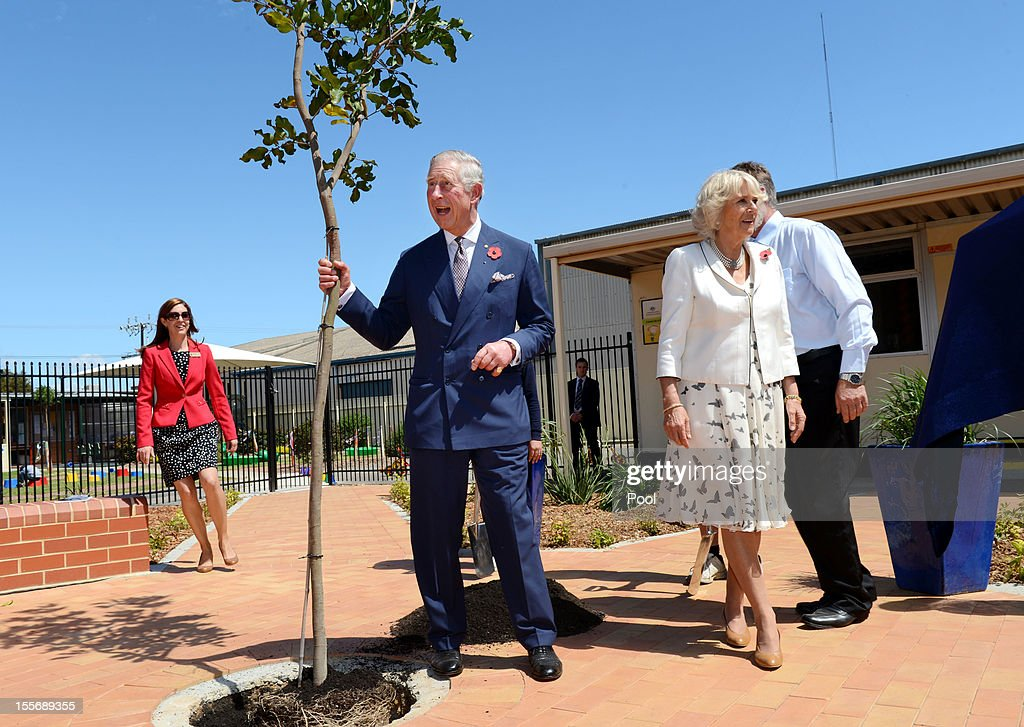 <a gi-track='captionPersonalityLinkClicked' href=/galleries/search?phrase=Prince+Charles+-+Prince+of+Wales&family=editorial&specificpeople=160180 ng-click='$event.stopPropagation()'>Prince Charles</a>, Prince of Wales and <a gi-track='captionPersonalityLinkClicked' href=/galleries/search?phrase=Camilla+-+Duchess+of+Cornwall&family=editorial&specificpeople=158157 ng-click='$event.stopPropagation()'>Camilla</a>, Duchess of Cornwall plant a tree after inspecting student gardens during a visit to Kilkenny Primary School on November 7, 2012 in Adelaide, Australia. The Royal couple are in Australia on the second leg of a Diamond Jubilee Tour taking in Papua New Guinea, Australia and New Zealand.