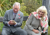 Prince Charles Prince of Wales and Camilla Duchess of Cornwall react as the Prince handles a tuatara during a visit to the Orokonui Ecosanctuary on...
