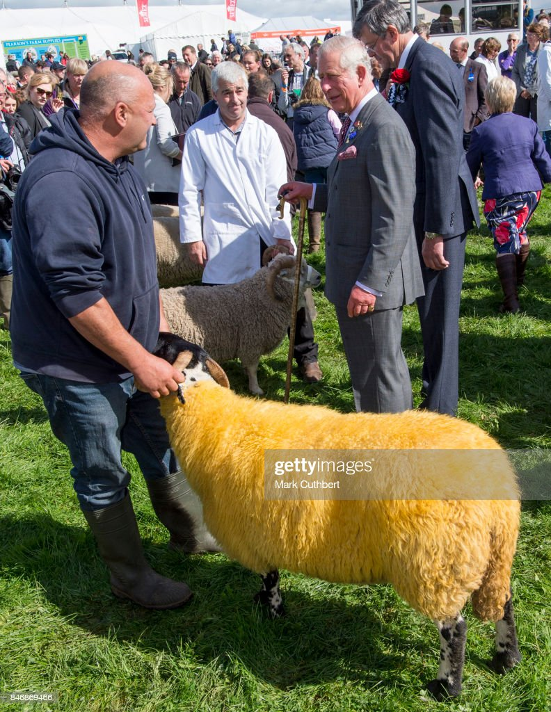 Prince Charles, Prince of Wales at The Westmoreland County Show on September 14, 2017 in Milnthorpe, England.