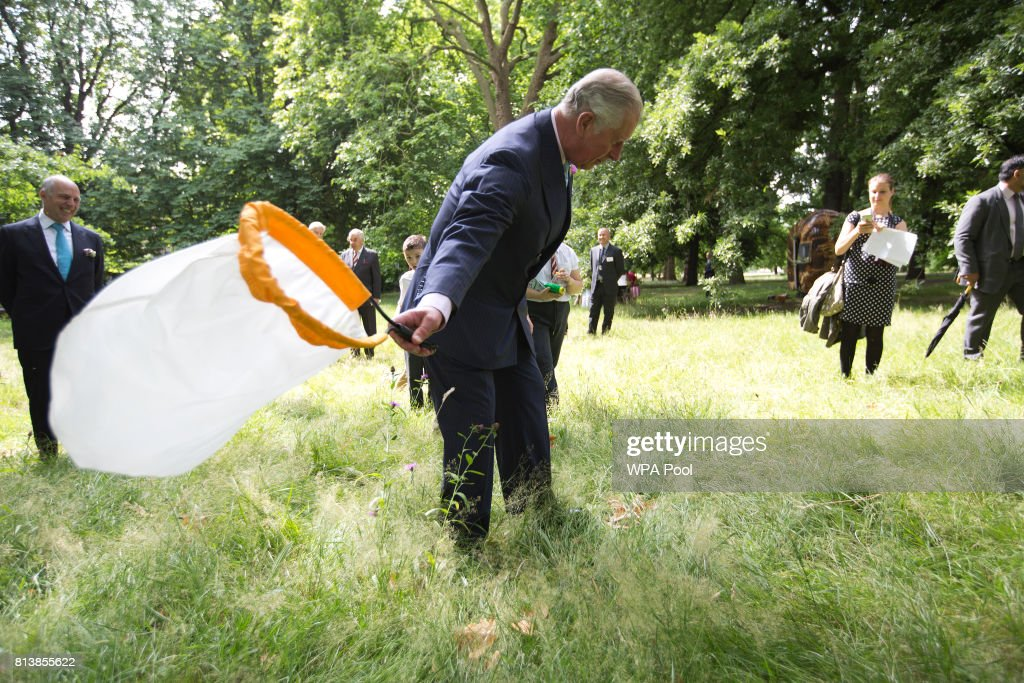 Prince Charles, Prince of Wales catches insects with Loyd Grossman and pupils St.James & St.John Church of England Primary School as he launches the new Royal Parks charity, of which he is a patron, at Hyde Park on July 13, 2017 in London, United Kingdom.