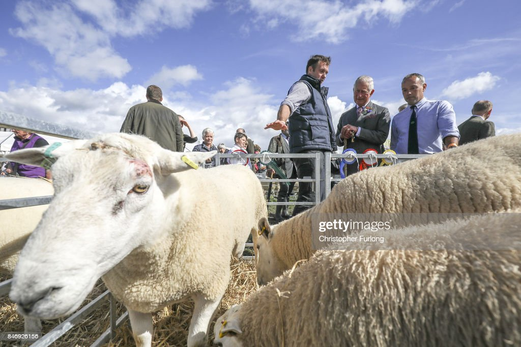 Prince Charles, Prince of Wales, chats to shepherds as he attends The Westmorland County Show on September 14, 2017 in Milnthorpe, England. During his tour of the Westmorland Show Prince Charles presented prizes and toured the many farm animal displays and exhibition marquees.