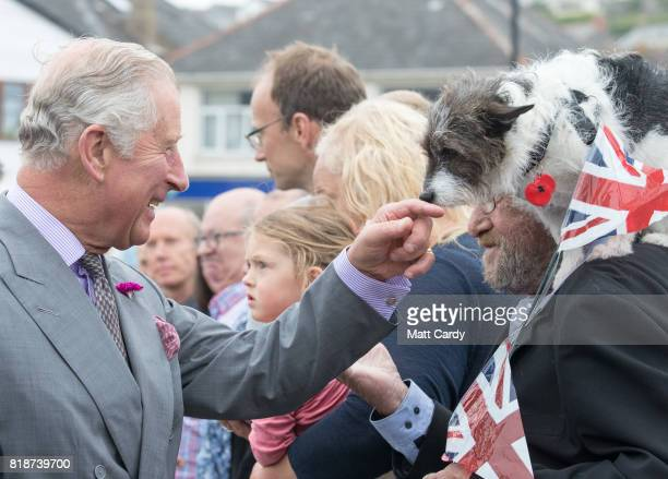 Prince Charles Prince of Wales greets Sophie a three year old Jack Russell Terrier owned by Peter Hichens from Porthleven as he visits Porthleven...