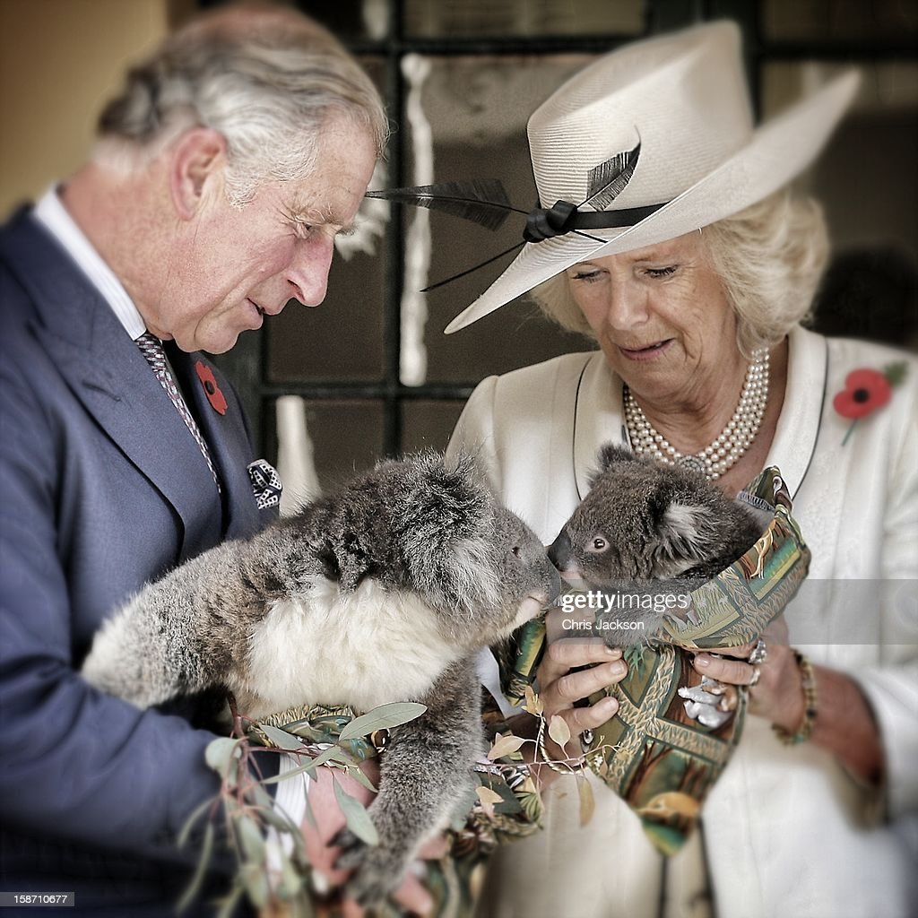 Prince Charles, Prince of Wales holds a koala called Kao whilst <a gi-track='captionPersonalityLinkClicked' href=/galleries/search?phrase=Camilla+-+Duchessa+di+Cornovaglia&family=editorial&specificpeople=158157 ng-click='$event.stopPropagation()'>Camilla</a>, Duchess of Cornwall holds a koala called Matilda at Government House on November 7, 2012 in Adelaide, Australia. The Royal couple are in Australia on the second leg of a Diamond Jubilee Tour taking in Papua New Guinea, Australia and New Zealand.