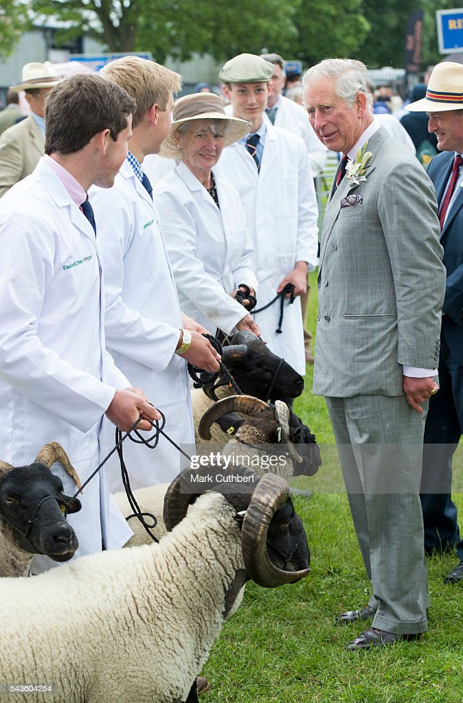 Prince Charles, Prince of Wales looks at a ram competition during a visit to The Royal Norfolk Show at Norfolk Showground on June 29, 2016 in Norwich, England.