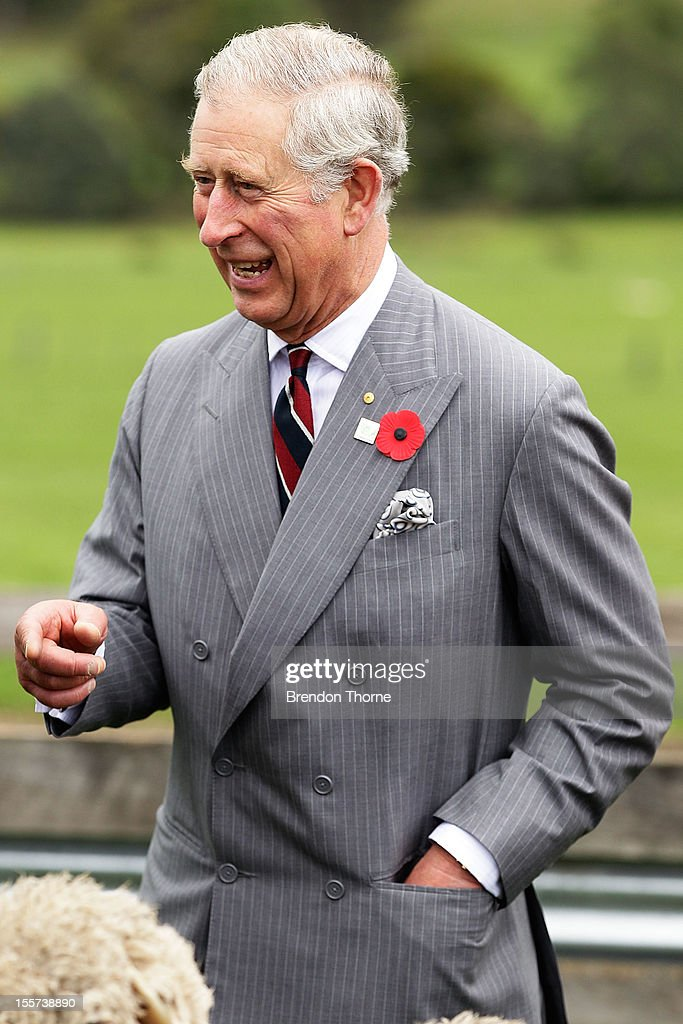 <a gi-track='captionPersonalityLinkClicked' href=/galleries/search?phrase=Prince+Charles&family=editorial&specificpeople=160180 ng-click='$event.stopPropagation()'>Prince Charles</a>, Prince of Wales observes sheep being mustered into shearing shed yards at Leenavale Sheep Stud on November 8, 2012 in Sorell, Australia. The Royal couple are in Australia on the second leg of a Diamond Jubilee Tour taking in Papua New Guinea, Australia and New Zealand.