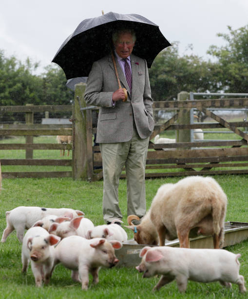 GBR: The Prince Of Wales Undertakes Engagements In Gloucestershire