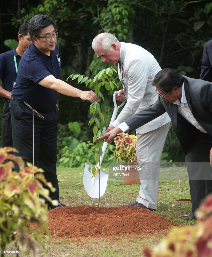 Prince Charles, Prince of Wales plants a tree during a visit to the Sarawak Biodiversity Centre on November 6, 2017 in Kuching, Sarawak, Malaysia. Prince Charles, Prince of Wales and Camilla, Duchess of Cornwall are on a tour of Singapore, Malaysia, Brunei and India.