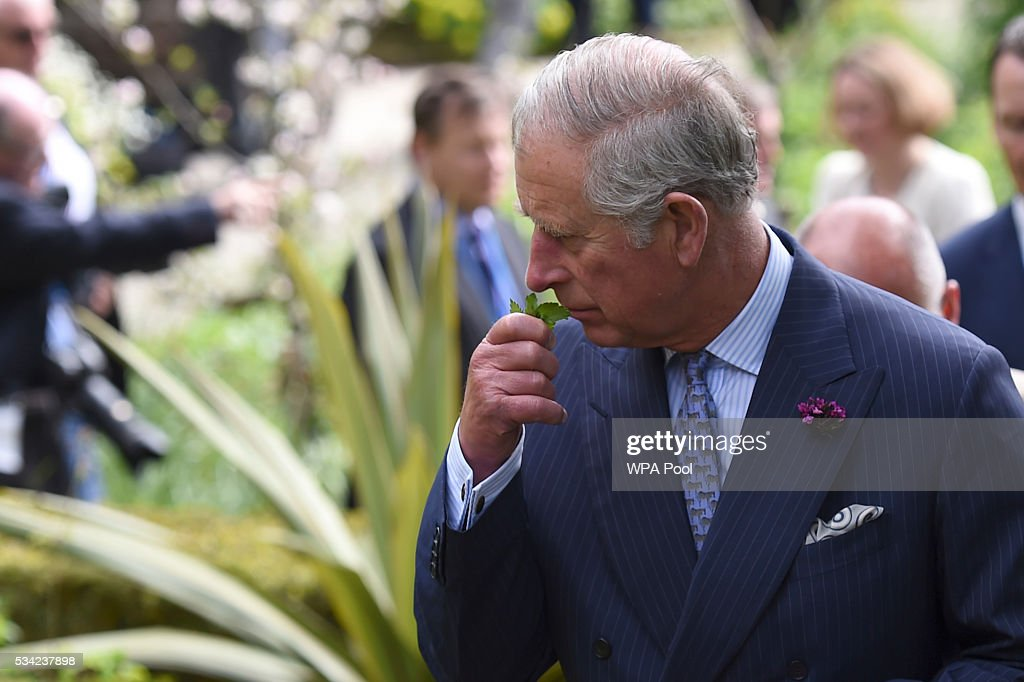 Prince Charles, Prince of Wales smells a plant during a visit to Glenveagh National Park on May 25, 2016 in Letterkenny, Ireland. The royal couple are on a one day visit to Ireland having spent two days across the border in Northern Ireland. It is their first trip to Donegal.
