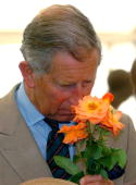 Prince Charles Prince of Wales smells flowers while visiting the Sandringham Flower Show on July 26 2006 in Sandringham Norfolk England