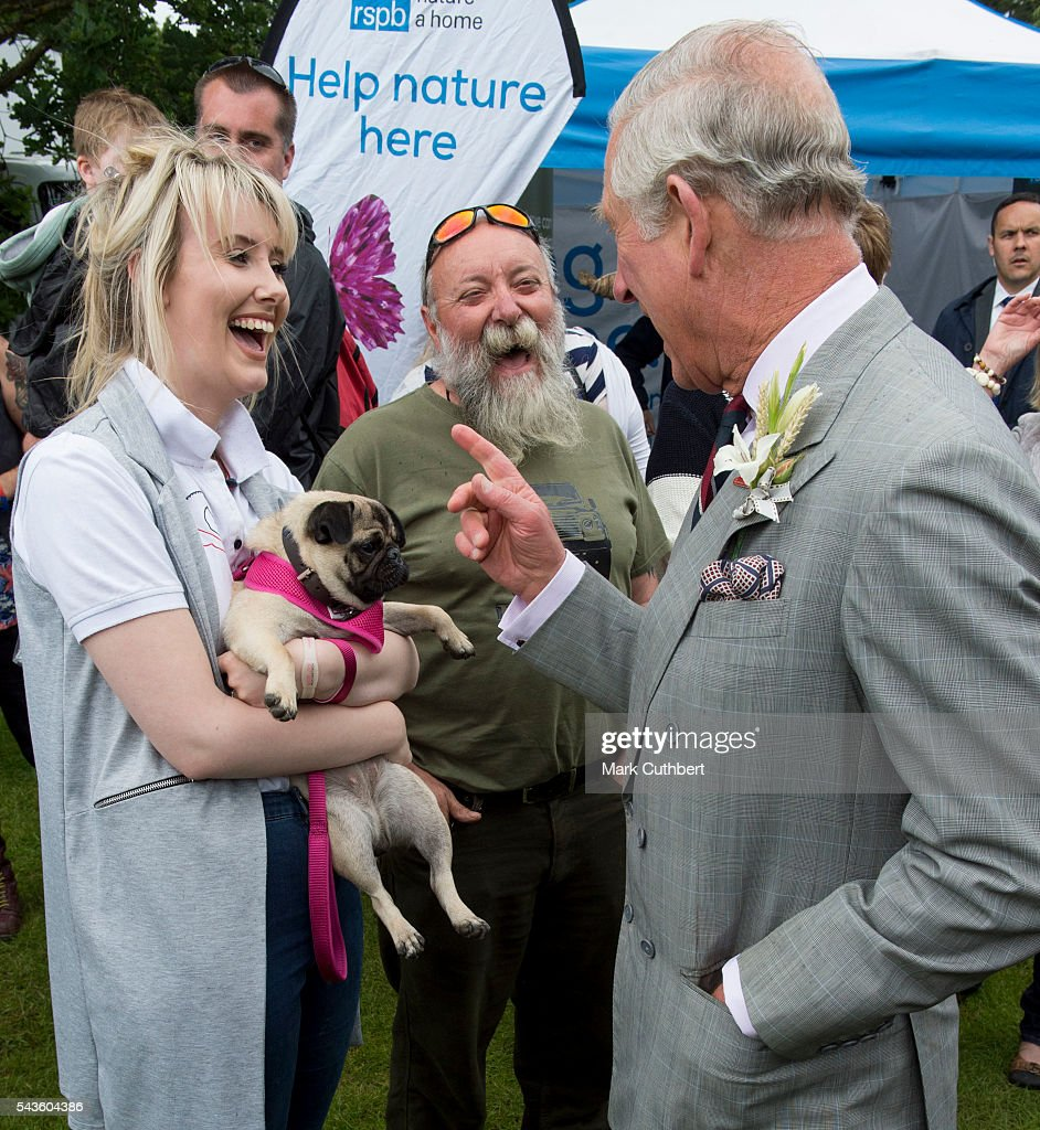 <a gi-track='captionPersonalityLinkClicked' href=/galleries/search?phrase=Prince+Charles+-+Prince+of+Wales&family=editorial&specificpeople=160180 ng-click='$event.stopPropagation()'>Prince Charles</a>, Prince of Wales strokes a dog during a visit to The Royal Norfolk Show at Norfolk Showground on June 29, 2016 in Norwich, England.
