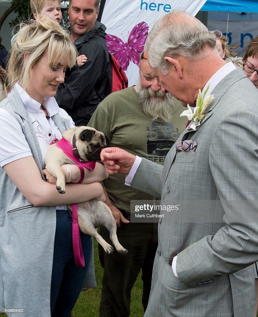 Prince Charles, Prince of Wales strokes a dog during a visit to The Royal Norfolk Show at Norfolk Showground on June 29, 2016 in Norwich, England.