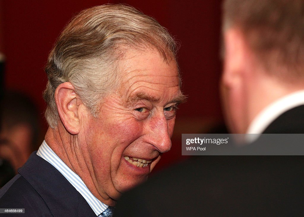 Prince Charles, Prince of Wales talks to guests during a leadership reception hosted by The Prince's Trust at The Royal Courts of Justice on January 23, 2014 in London, England.