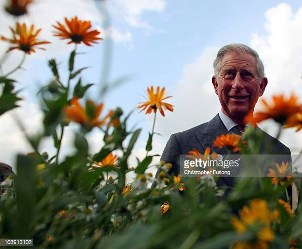 Prince Charles Prince of Wales tours a herb garden during his visit to Todmoreden today on September 8 2010 in Todmorden England Prince Charles met...
